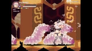 Echidna Wars DX 1