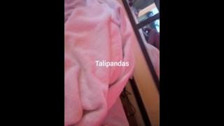 Wot Talipandas